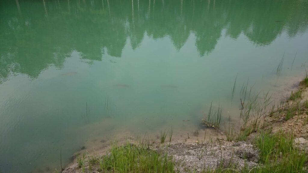 Łowisko Staw Gruba Ryba